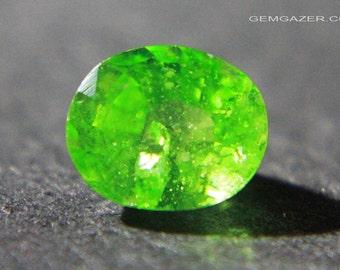 Tsavorite Garnet, faceted, Kenya.  1.36 carats