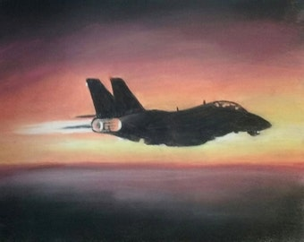 Afterglow F-14 Tomcat