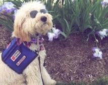 Service Dog Vest -- ultra durable -- tri-pocket -- canvas shell