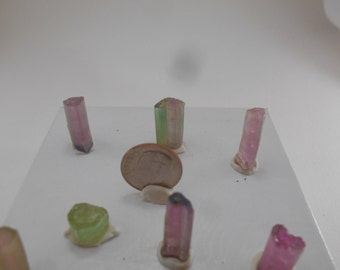 Watermelon Tourmaline Bundle
