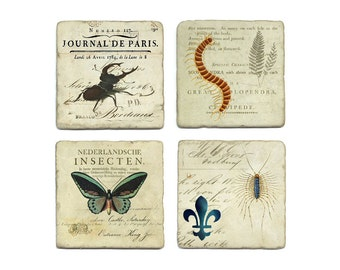 Insect Coaster Set