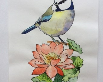Original watercolour drawing of Blue-Tit with flower