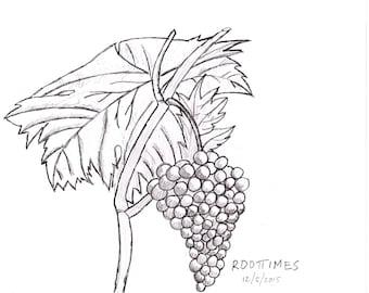Living Grapes - Raw Art