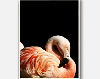 Flamingo, Flamingo Print, Tropical Wall Art, Pink Flamingo, Printable Flamingo, Tropical Poster, Beach Decor, Beach Art, Flamingo Photo