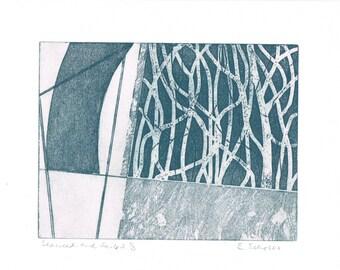 Seaweed and Sails 2