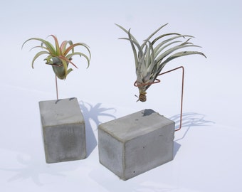 CONCRETE JUNGLE • BRICK • concrete and copper  airplant holder - planter - home decoration - gift