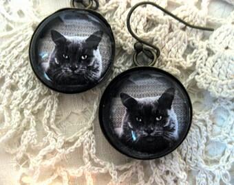 Russian Blue Grey Cat Earrings