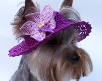 "Hat for dog ""Orchid"", Dog Sun Hats, Party Hats For Dogs, Crochet Hat For Dog, Dog Beanies, Hats For Dogs To Wear, Doggy Hats, Knit Dog Hat"
