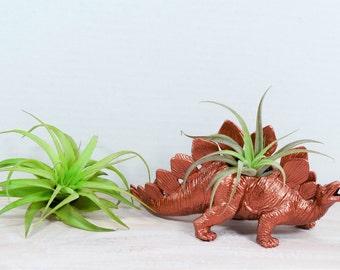 COPPER Medium Plantasaurus / Stegosaurus Dinosaur Planter with Air Plant, Air Plant Holder, Dino Planter, Low Shipping, Great Gift