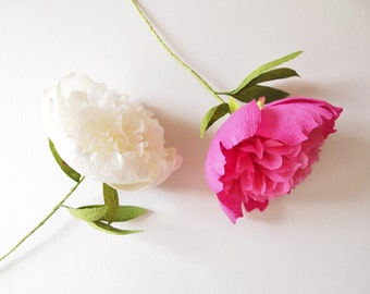 Filled Peony with message * free shipping * paper flowers, wedding, party double peony decoration, gift, crepe paper,