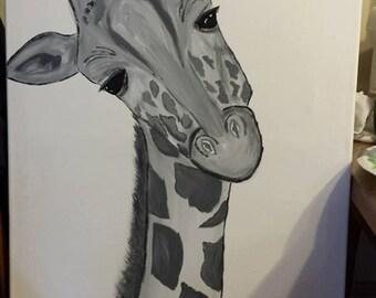 Blck and white Giraffe