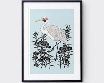 Brolga Art Print / Australian Birds / Giclee Print / Poster / Bird Brint