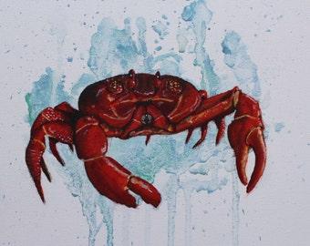 PRINT - THE CRAB - Orginal painting by Quinn Nixon