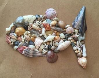 Shell Fish