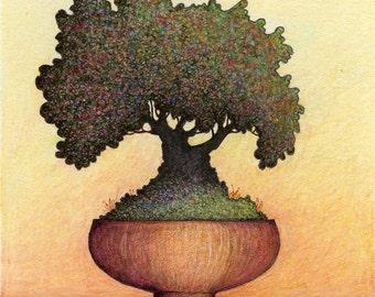 Wisdom of the Tree