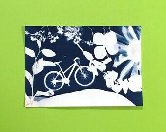 Road Bike - Day 11 Print of Cyanotype