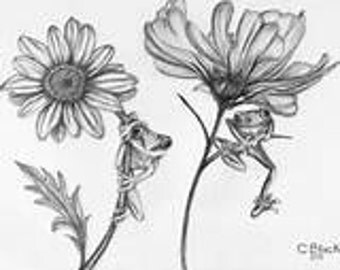 flowers and frogs sketch