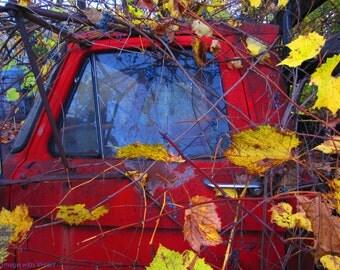 Red Vinyard Truck 11 x 14 ChromaLux Print