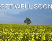 Get Well Soon Speedy Recovery - A Tree has been Planted in your name in a National Forest.  Send a Card & Arrange to Plant Trees. SHIPS FREE