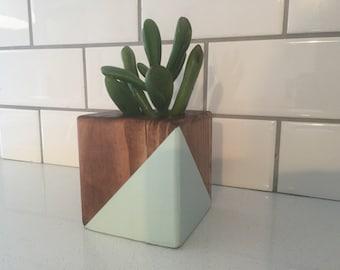 Succulent Planter Etsy