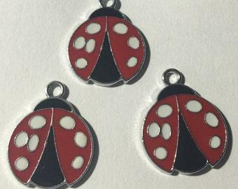 Ladybug Charms