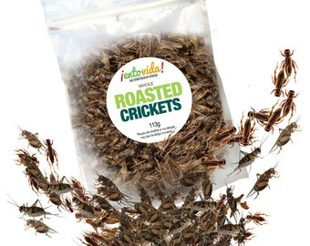 Edible Insects | Whole Roasted Crickets