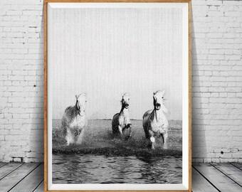 White Horses Print, Modern Horse Art Print, Nature Art Photography, Minimalist Black and White Photography, Nature Art, White Horses Running