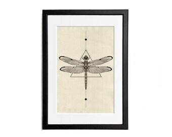 Dragonfly Print illustration A4 Poster Wall Decor Naturalistic Illustration