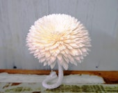8 Chrysanthemum Sola Wood Diffuser Flowers 8 cm Dia. with cotton rope and adjustable wire stem