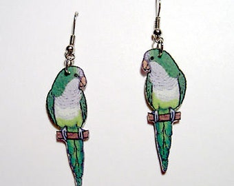 Handcrafted Plastic Quaker Parakeet Earrings