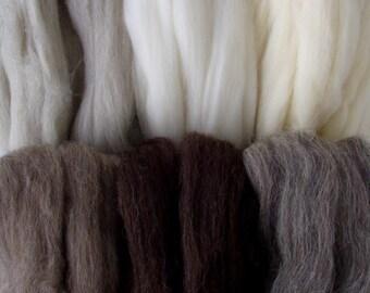 8.8oz Natural wool roving, 6 shade mix, felting wool, spinning fiber, dolls hair, wool roving, wool tops, white roving, brown roving, 250g