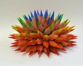 Rainbow Pencil urchin