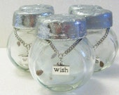 Silver wish jar with charm and milk weed wishes