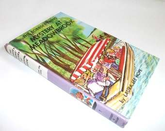 Hollow Book Safe Bobbsey Twins Mystery at Meadowbrook Secret Stash Storage Compartment