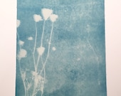 Large Queen Anne's Lace Cyanotype No. 4