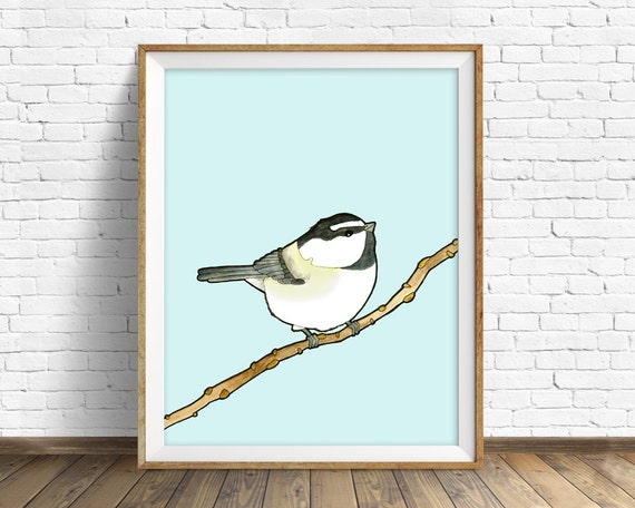 Mountain Chickadee - bird, drawing, watercolor, chickadee, blue, art print, wall art print, large wall art, animal art print, woodland, art