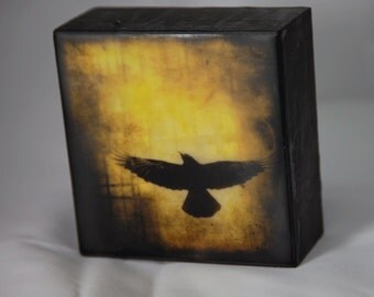 Gold Black Crow Encaustic Photograph on Wood Panel--Black Crow Rising in the Sun--4x4 Fine Art