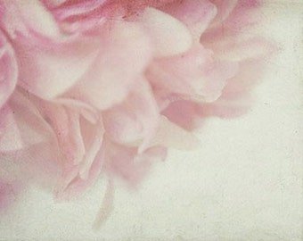 Ethereal Peony Photograph, Shabby Chic Wall Decor, Floral Art Print, Pink Peony Wall Art, Flower Photography