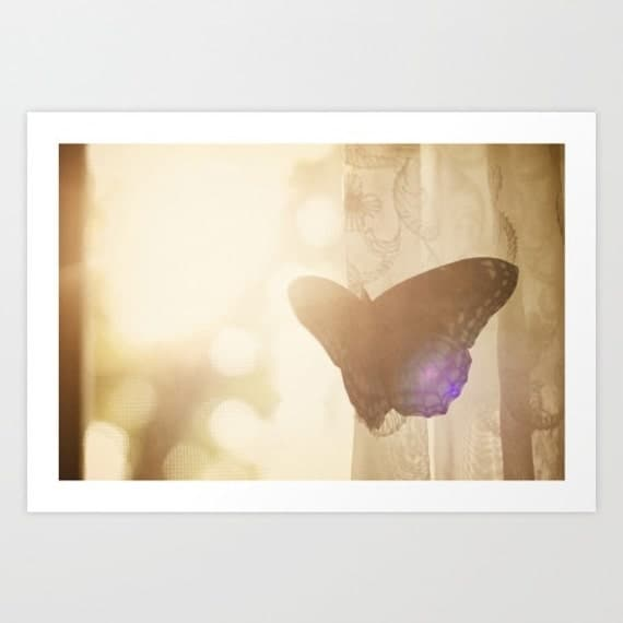 butterfly photography- sunlight- yellow- Fly fine art photograph- pretty feminine- wall decor- girl's room decor-pretty butterfly art