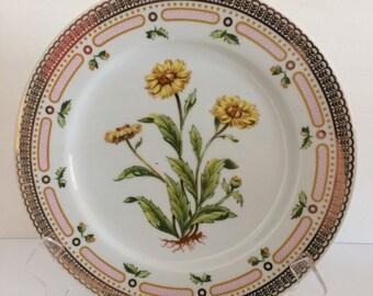 Georges Briard Floral Potpourri Dinner Plate Corn Marigold Botanical Mid Century Fine China