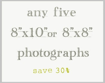 Photography Set of Five - Any 8x10 or 8x8 Prints