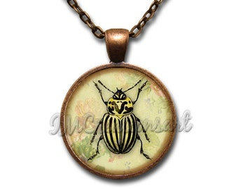 10-YR Anniversary Sale! Beetle Bug Insect Yellow Black Stripes Glass Dome Pendant or with Chain Link Necklace  AN218