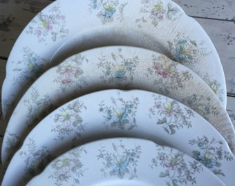 Vintage Ironstone Plates J & G Meakin Bouquet Pattern - Antique