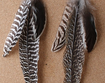 FEATHER Earrings -- Bird, Native American, Southwest - Style 44 - Triple Feather