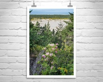 Oregon Coast, Pacific Northwest, Vertical Wall Art, Oregon Dunes, Oregon Beach, Nature Photography, Sand Dunes, Murray Bolesta