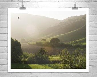Landscape Picture, Santa Barbara Photography, Lompoc California, Farm Country, Rural America, Pastoral Art, Pasture Picture, Back Roads