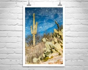 Cactus Print, Desert Art, Tucson Arizona, Saguaro Cactus, Abstract Photo, Cacti, Vertical Print, Art for Living Room, Cobalt, Azure, Gift