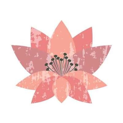 pinklilypress