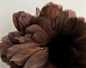 PRIMA GOOSE  / Chocolate Brown  / PR - 34