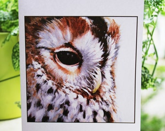 """Spotted Owl Card - 5x7"""""""